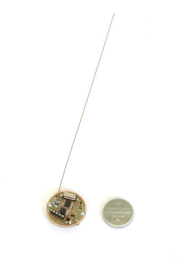bug microphone with voice control